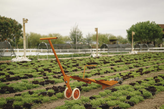 paperpot transplanter from paperpot co