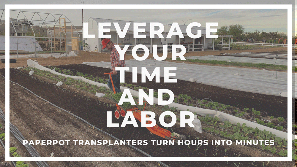 Paper Pot Transplanter transplanting crops.